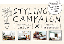 STYLING CAMPAIGN